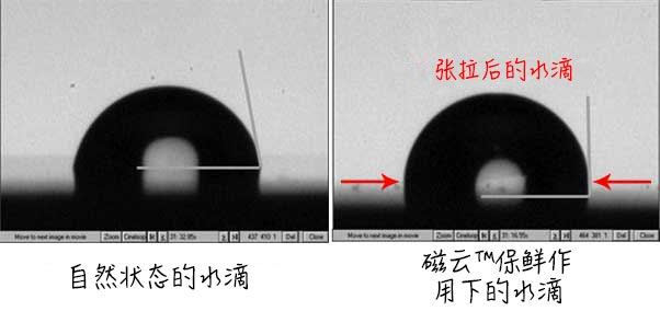 normal water droplet vs. water droplet when exposed to FoodSphere - EsMo Technologies